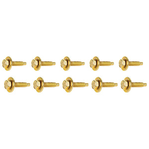 Body Bolt 1-1/8in 10pk Gold