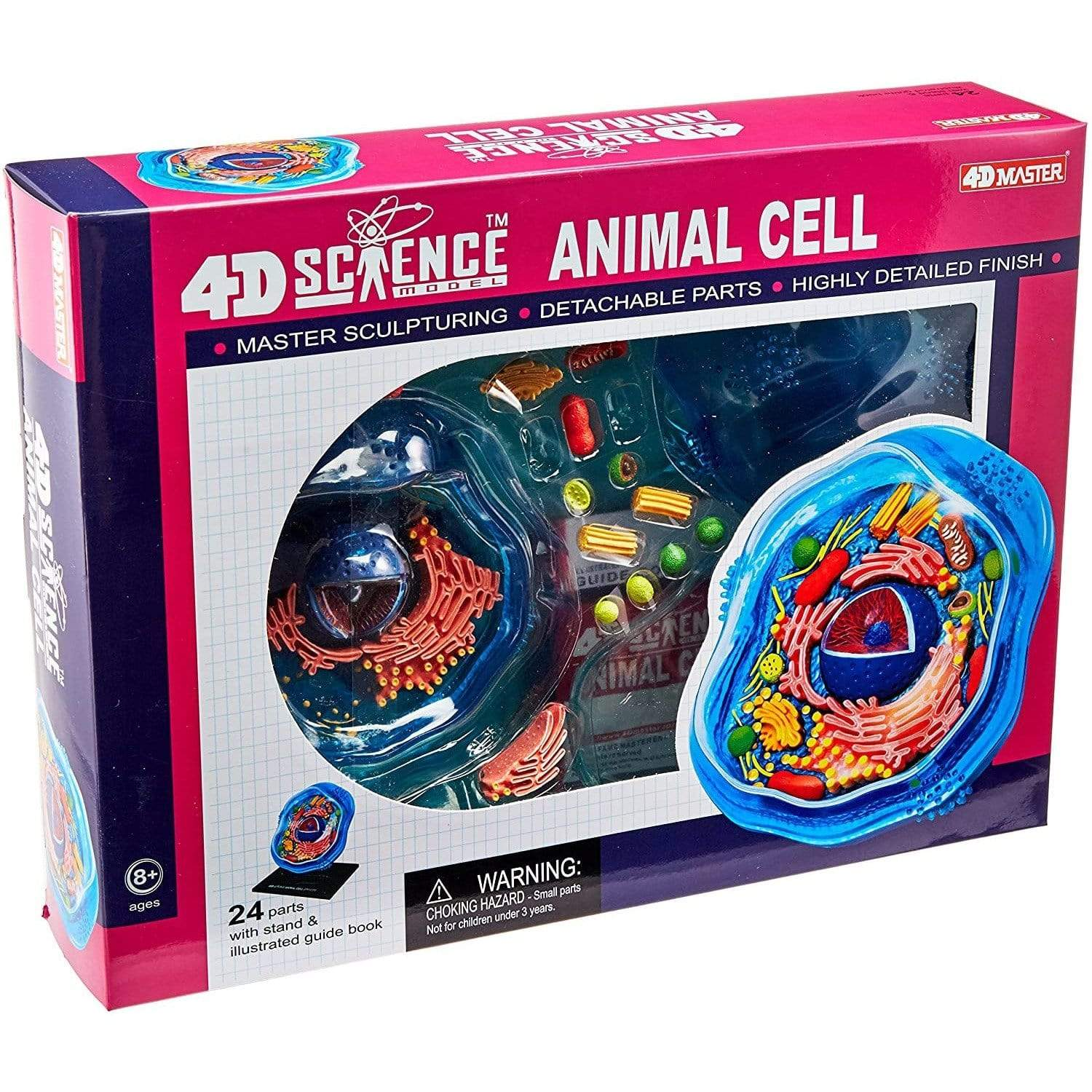 4D Vision Animal Cell Tedco Projects/Kits