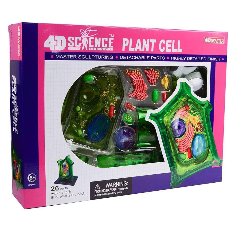 4D Vision Plant Cell Tedco Projects/Kits
