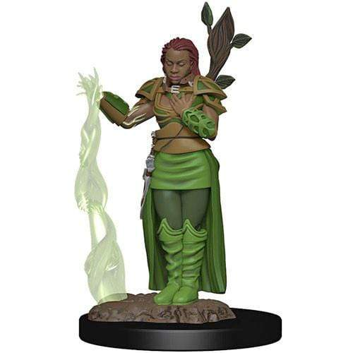 D&D Icons of the Realms: Human Female Druid Wizards of the Coast Board Games