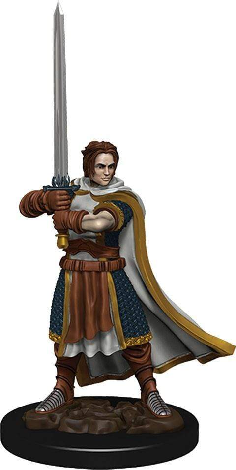 D&D Icons of the Realms: Human Male Cleric Wizards of the Coast Board Games