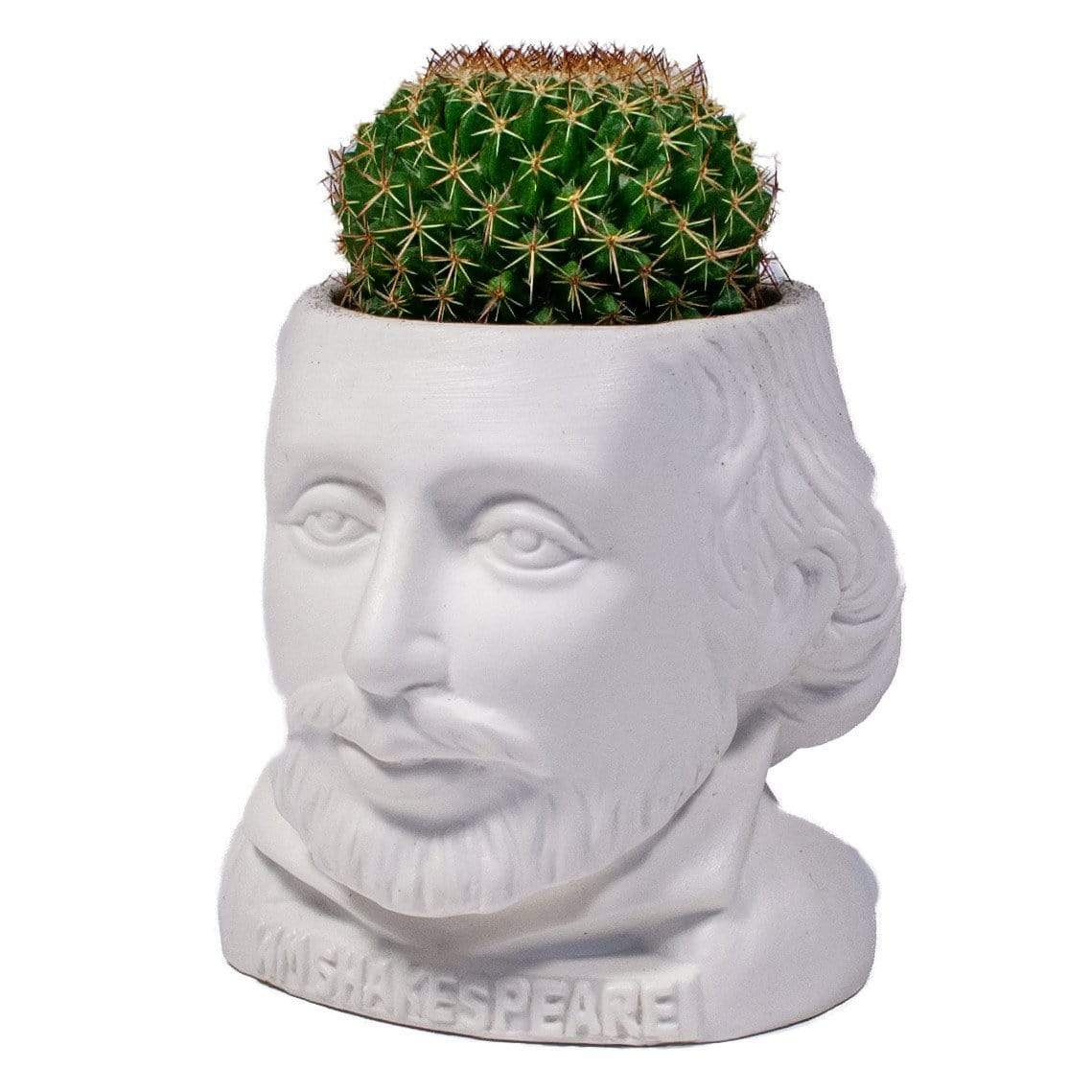 Fertile Minds William Shakespeare Planter Unemployed Philosophers Guild Home Decor/Kitchenware