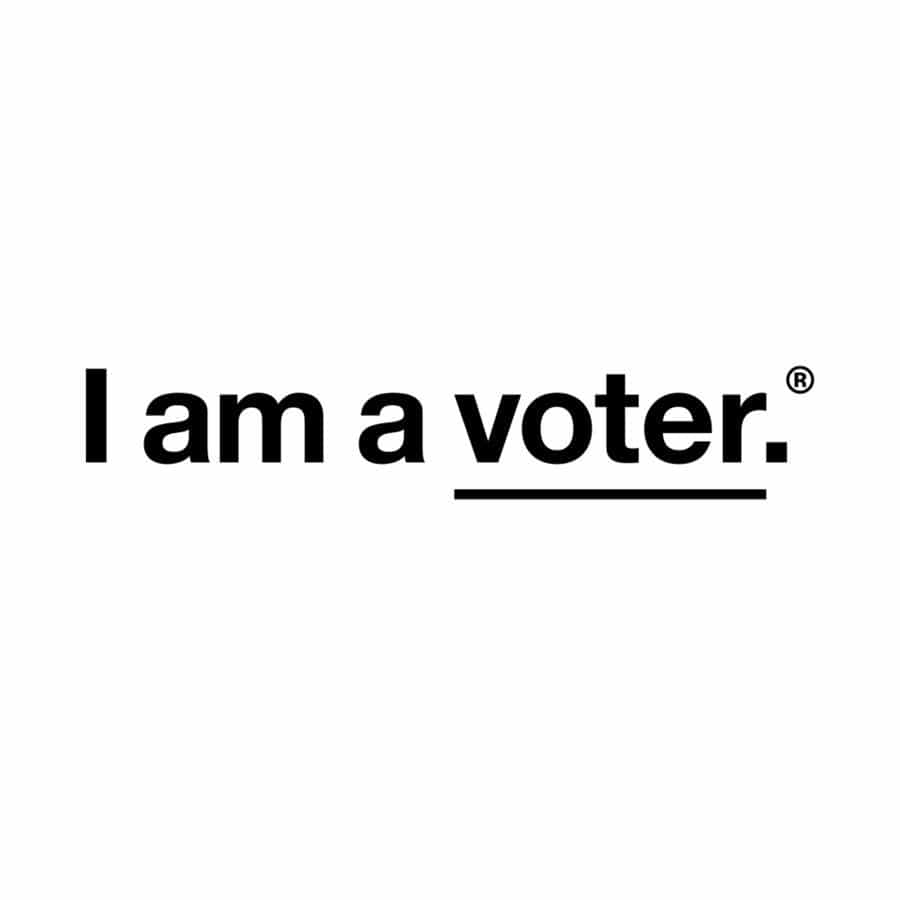 I Am A Voter Tattoo Pair Tattly Art Supplies