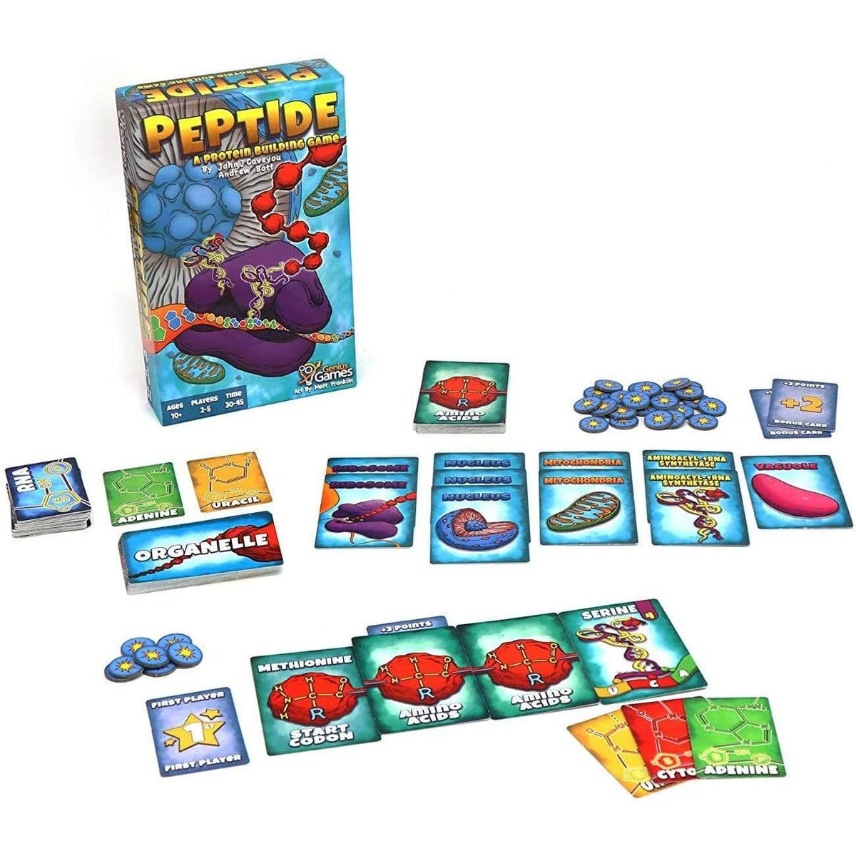 Peptide: A Protein Building Game Genius Games Board Games
