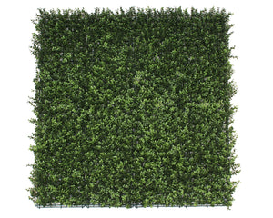 Premium Natural Buxus Hedge Panels UV Resistant 1m x 1m