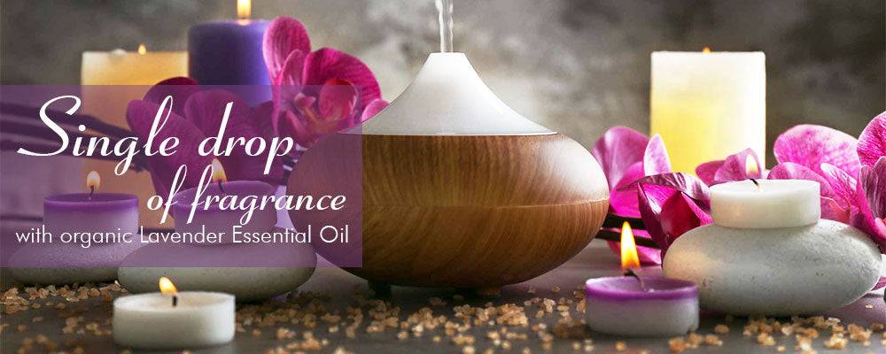10 Best lavender essential oil diffuser benefits