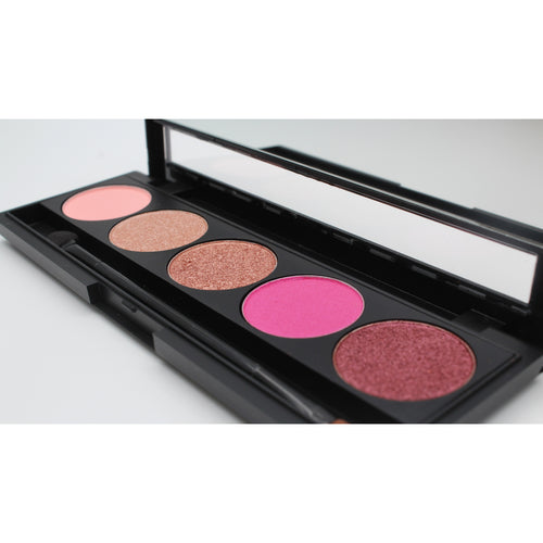 Raspberry Ripple Pink 5 piece Eyeshadow Palette