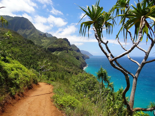 Hawaii travel guides