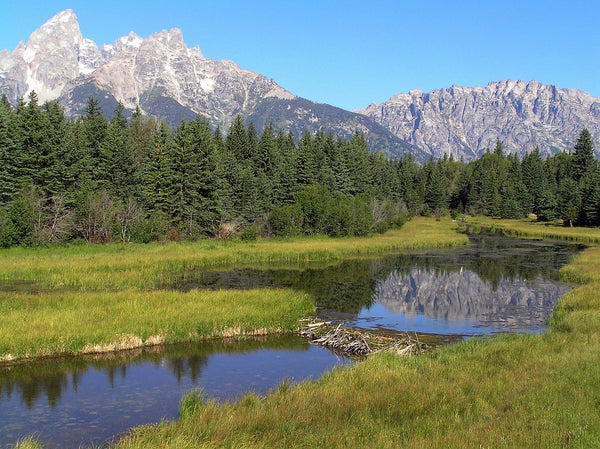 Jackson Hole Tetons Yellowstone travel guide
