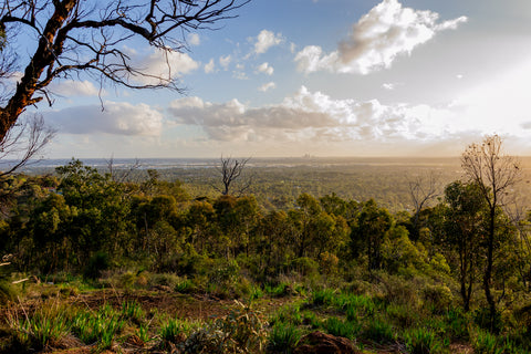 View over Perth and bushland from the Lascelles Parade lookout, Kalamunda