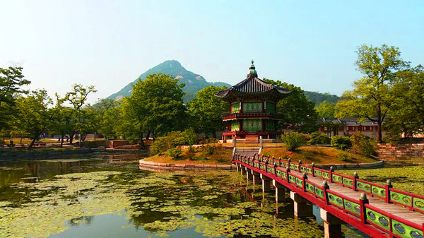 3 Days in the Vibrant City of Seoul and the Serene Countryside of Gapyeong (2nd Edition)