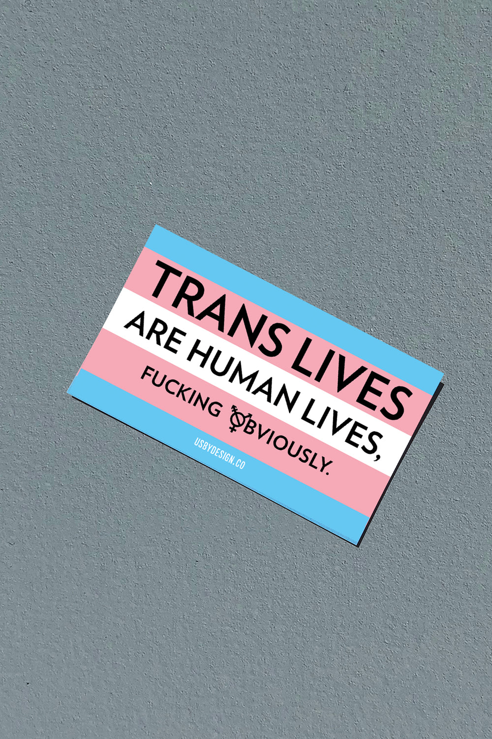 TRANS LIVES STICKER
