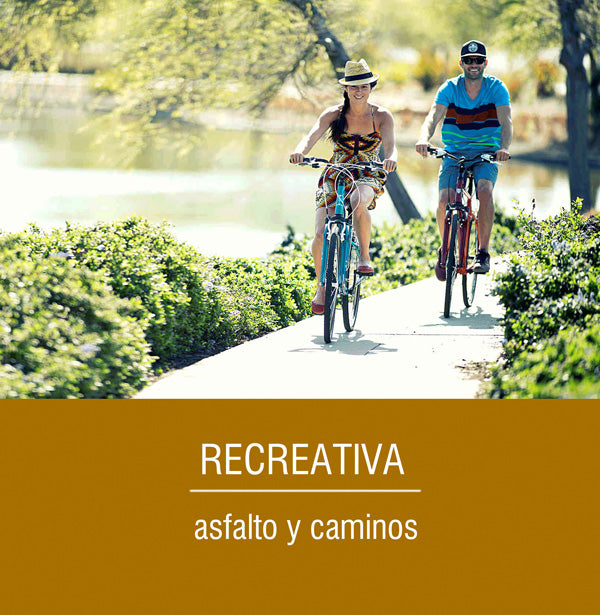 bicicleta recreativa