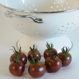 Tomato - Black Cherry Tomato Seed Pack (Solanum lycopersicum 'Black Cherry')