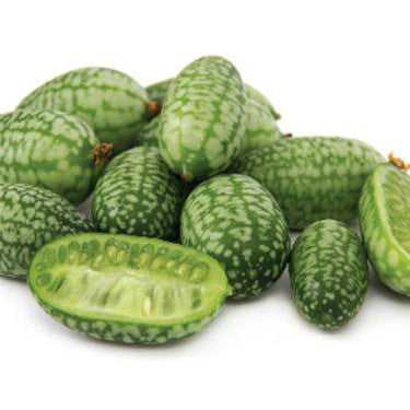 Cucamelon Seed Pack (Melothria scabra)