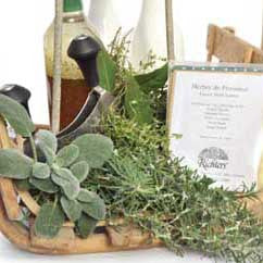 Richters Collection: Herbes De Provence French Herb Garden