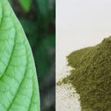 Kratom (Mytragina speciosa) Powder by the gram