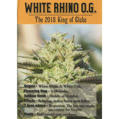 7 Aces Seeds - White Rhino O.G. - 15-Pack Regular / Photoperiod (Not Feminized)