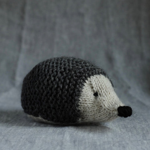 Grey Hedgehog
