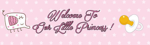 Welcome To Little Princess Banner