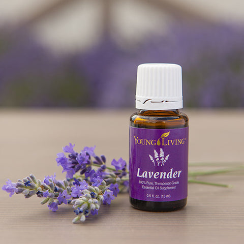 Lavendar - Young Living Essential Oil