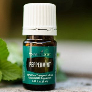Peppermint - Young Living Essential Oil