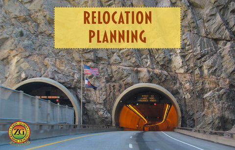 Relocation Planning Consultation