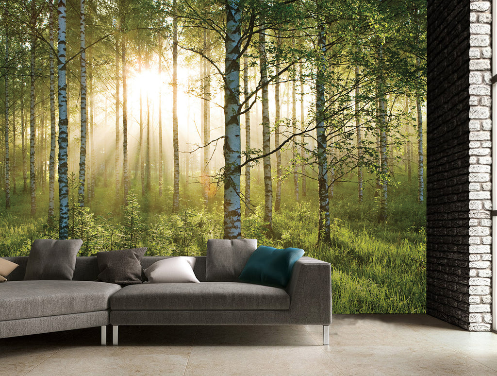 FOREST SCENE WALL MURAL (3.6m 2.53m) Part 81