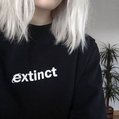 Internet Explorer Extinct Pullover - Online Aesthetic -  Tumblr Kawaii Aesthetic Shop Fashion