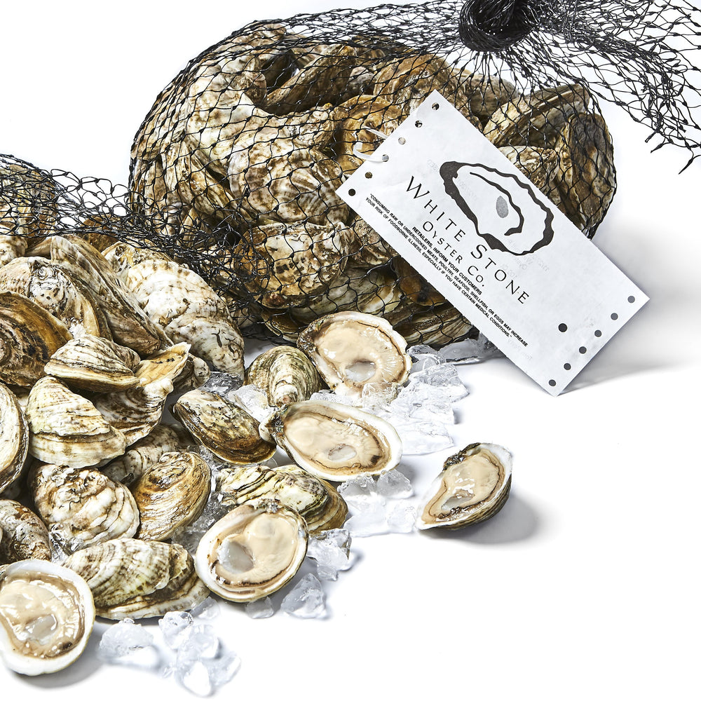 White Stone Oysters (200 ct)