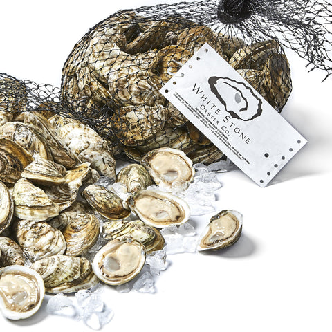 White Stone Oysters 200