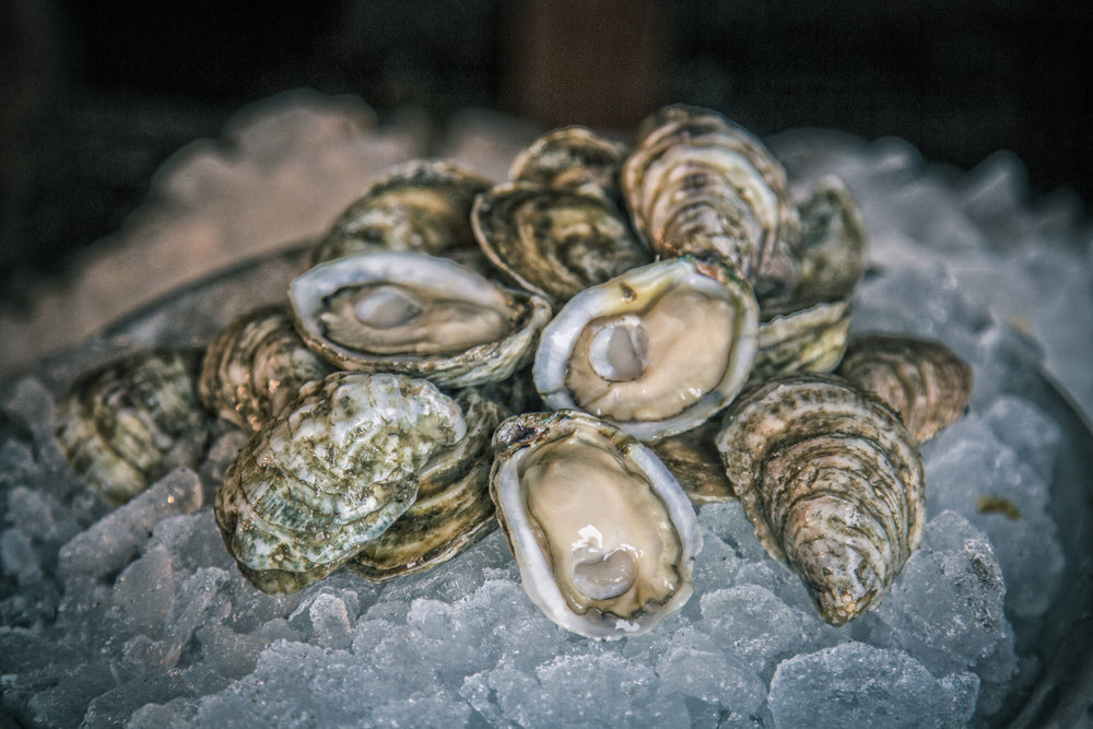 Load image into Gallery viewer, White Stone Oysters (200 ct)