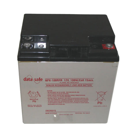 R&D Batteries NPX-100RFR Battery