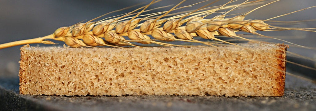 Research Confirms Biological Explanation for Non-Celiac Wheat Sensitivity