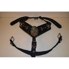 Collars, Leads, Harnesses