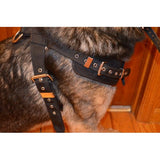 Nylon Trailing Harness