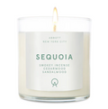 Abbott NYC | Sequoia Candle 8oz