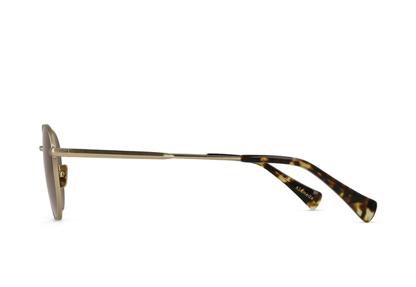 RAEN | Alameda | Satin Japanese Gold + Brindle Tortoise / Smoke Brown Polarized | 51