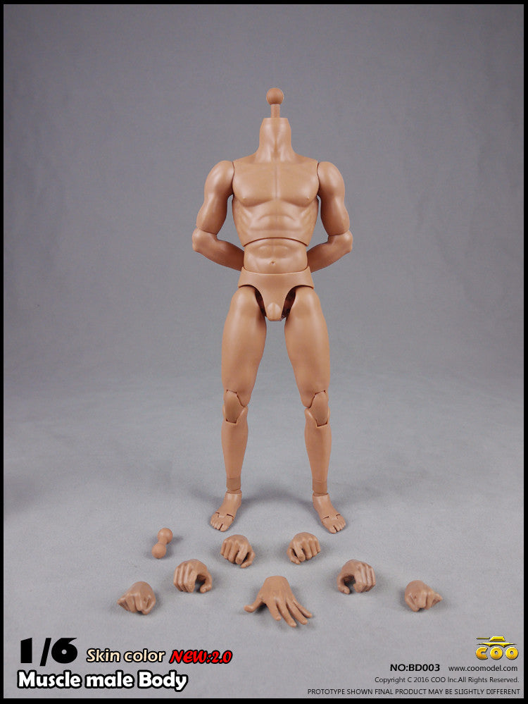 COO MODEL 1/6 Male Muscle Body 2.0 Action Figure Set (Regular Height) #CM-BD003