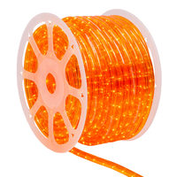 Wintergreen Orange led Rope Light, 120 Volt, available in different sizes