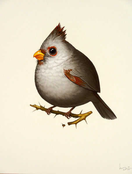 Mike Mitchell - Fat Bird: Desert Cardinal (Female)