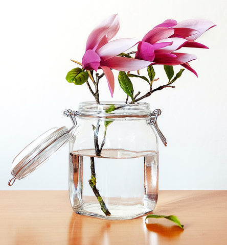 Magnolias in vase - Blog - Pallu Design