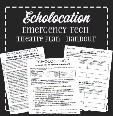 Echolocation Emergency Sub Lesson Plan and Handout