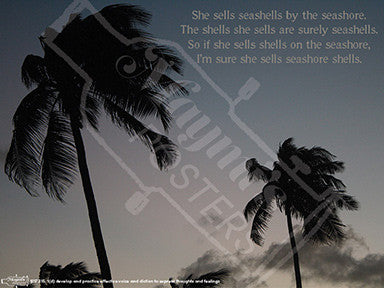 She Sells Seashells Poster