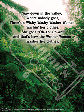 Wishy Washy Woman Poster