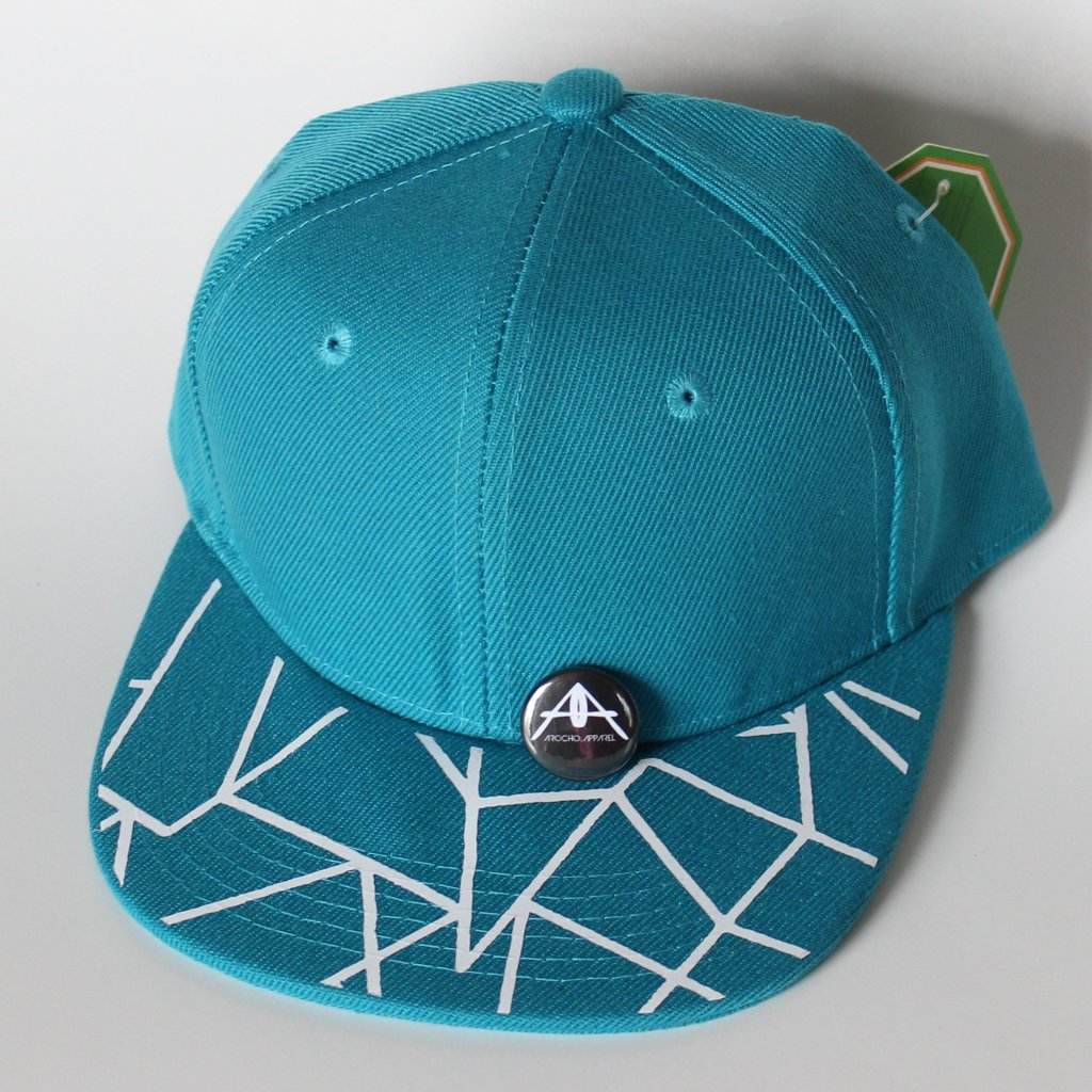 TEAL ABSTRACT  SNAPBACK