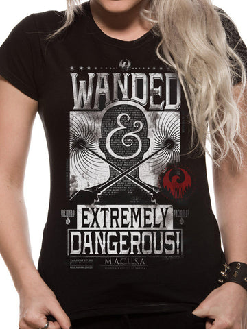 Wanded and extremely Dangerous