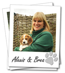 An interview with Alex from Wagging Tails GL