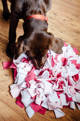 Snuffle mats for Labradors - Meet Elsie