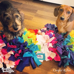 Snuffle mats for Dachshunds